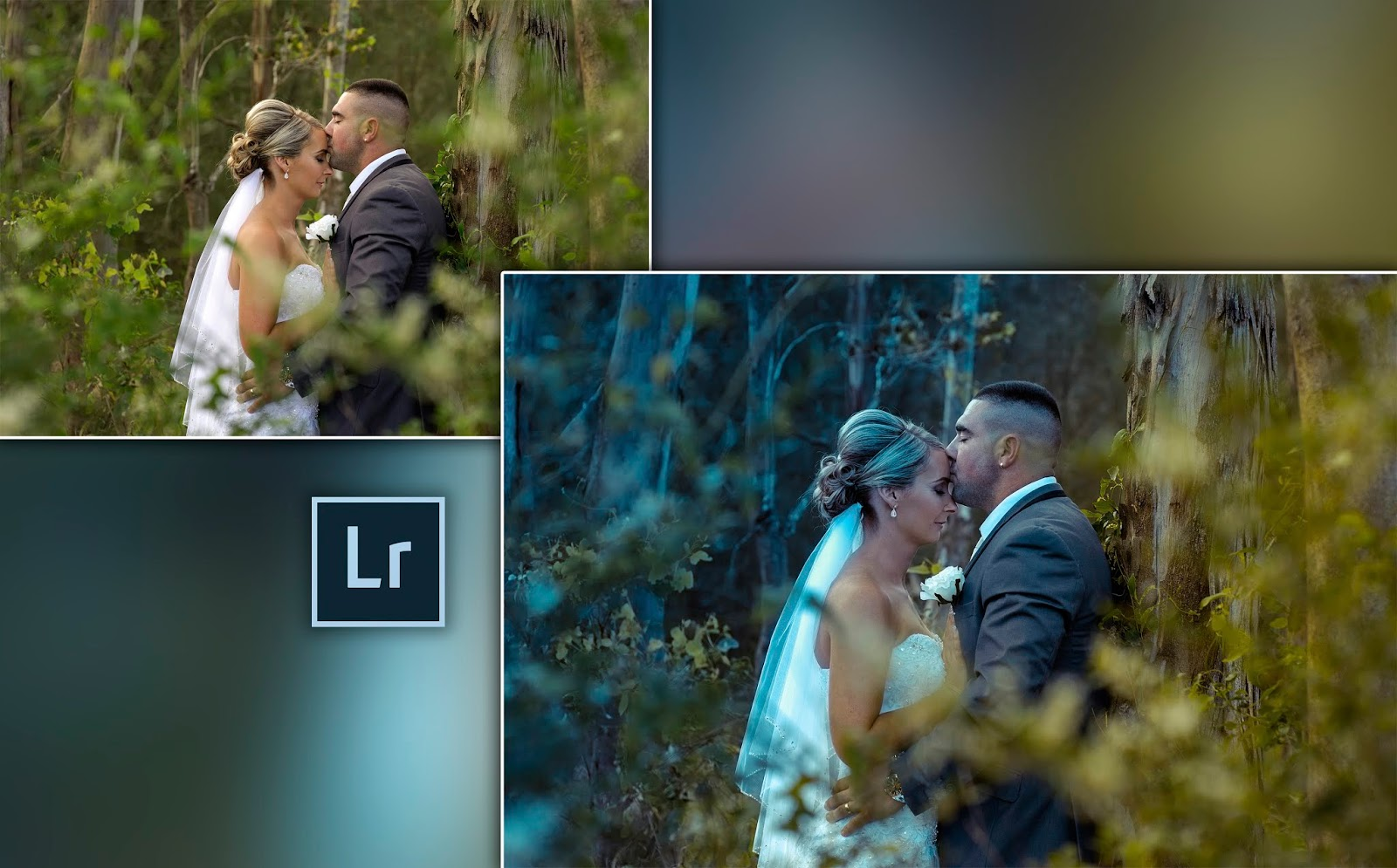 How to Edit Your Pre-Wedding Photos in Lightroom   Step by Step