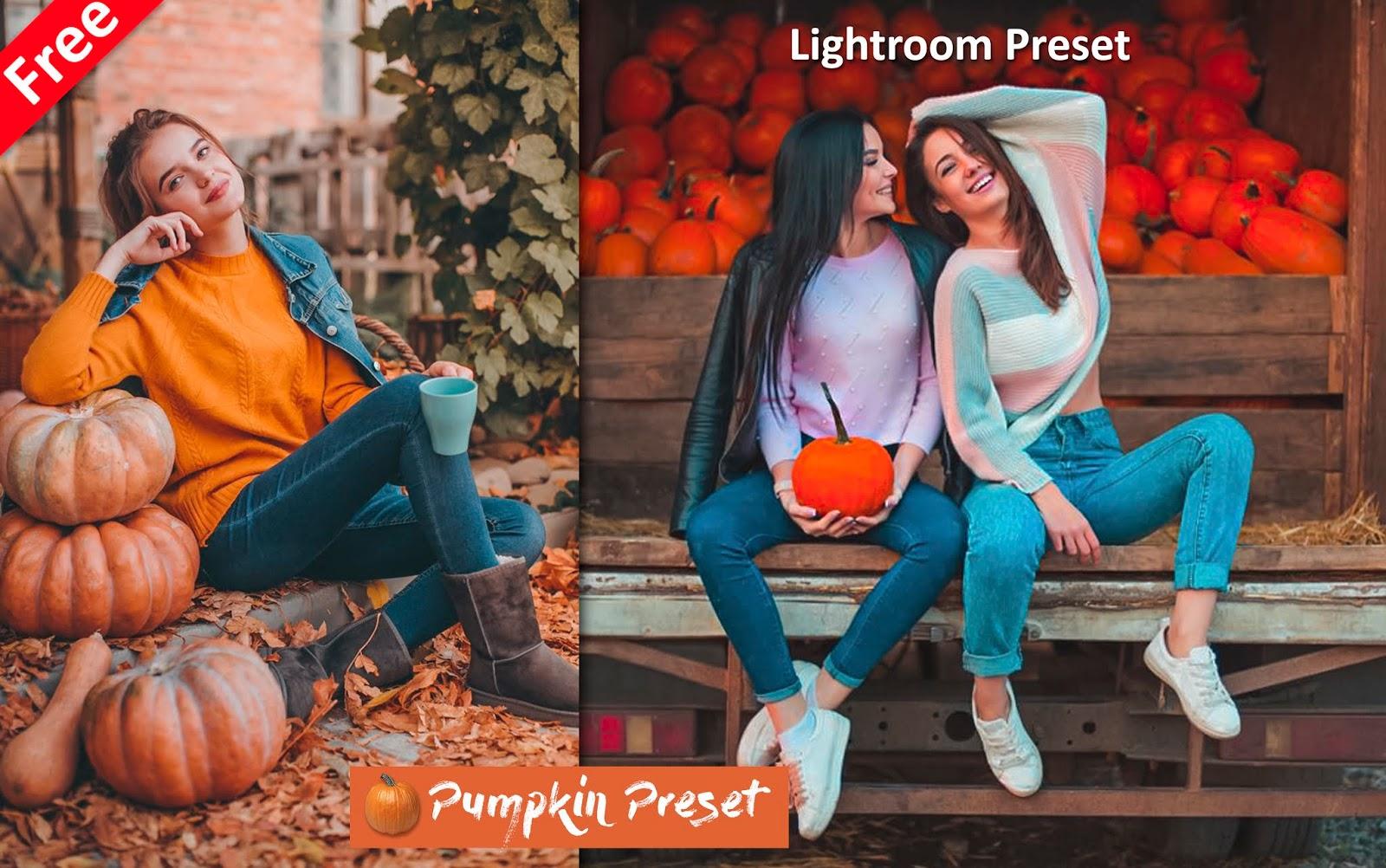 Download Pumpkin Lightroom Preset for Free   How to Edit Photos Like Pumpkin Effect in Lightroom