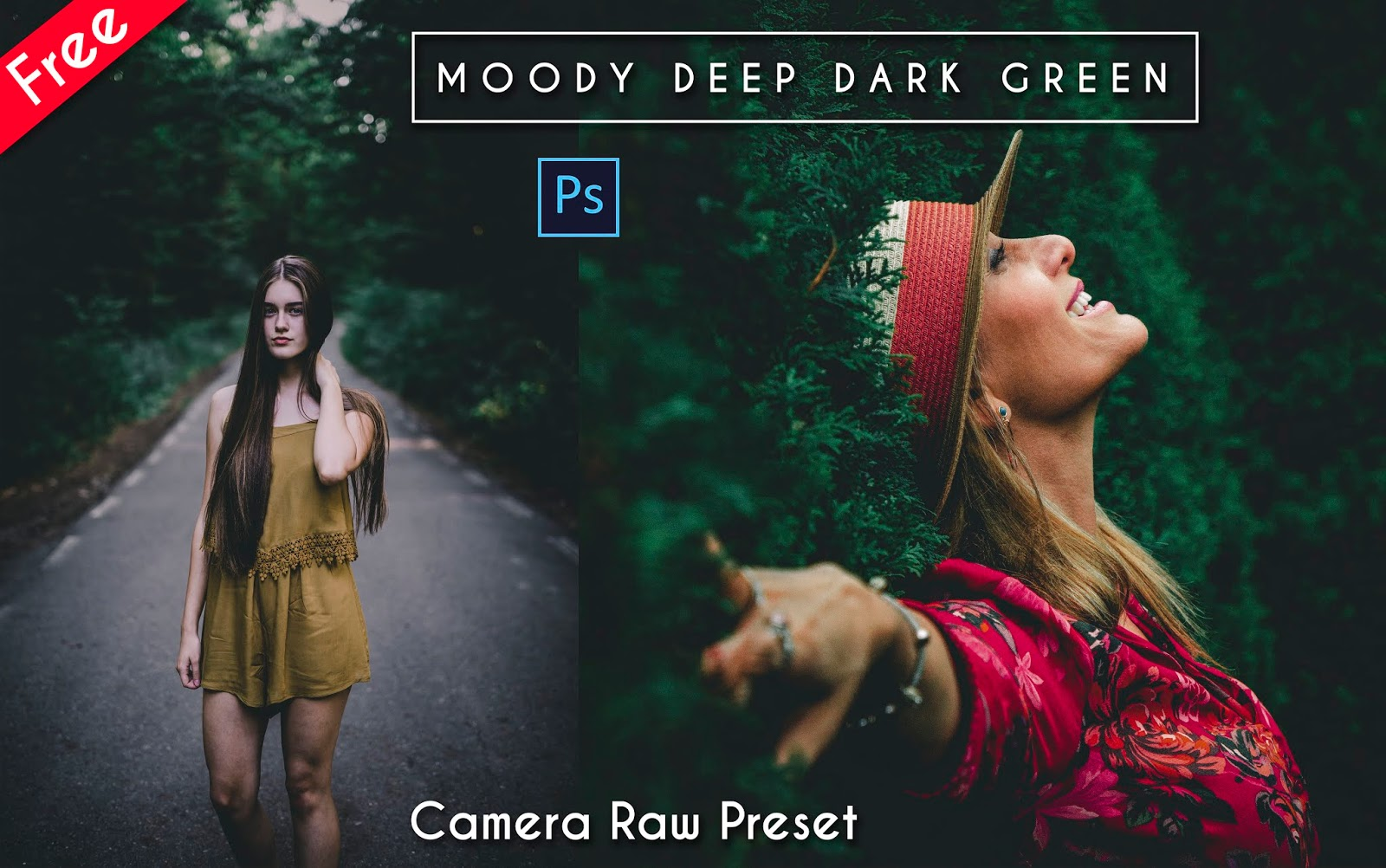 Download Moody Deep Dark Green Camera Raw Preset for Free | How to Edit Your Photos Like Moody Deep Dark Green  Effect in Photoshop