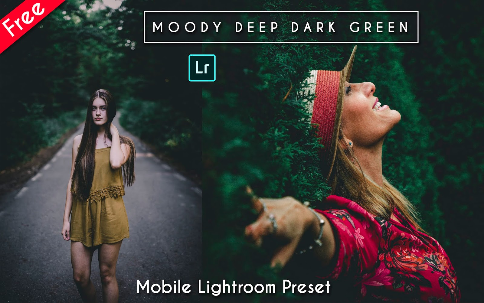Download Moody Deep Dark Green Mobile Lightroom Preset for Free | How to Edit Your Photos Like Moody Deep Dark Green Effect in Mobile Lightroom App