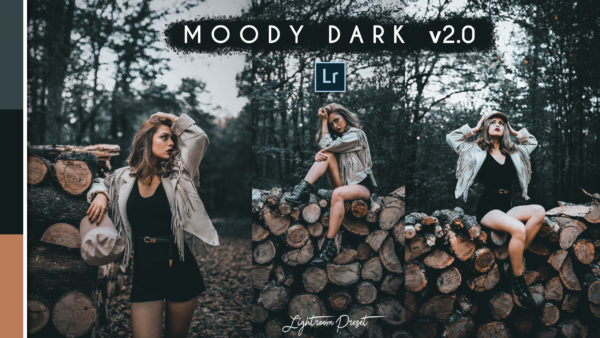 Download Moody Dark v2.0 Lightroom Presets of 2020 for Free | Moody Dark v2.0 Desktop Lightroom Presets