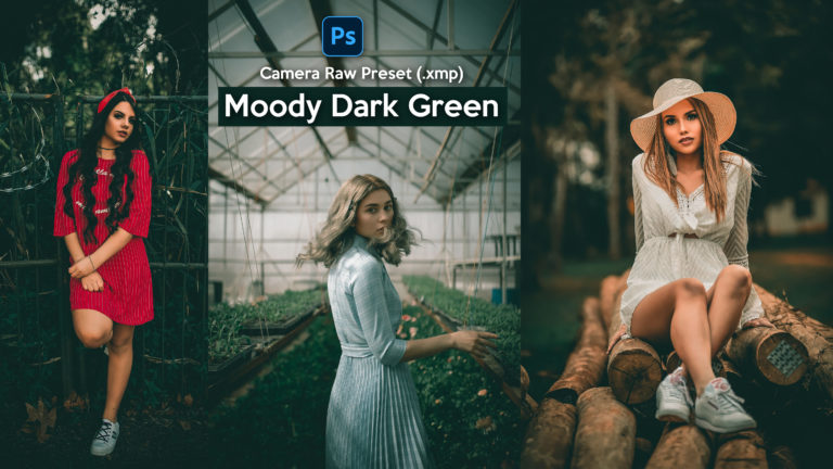 Download Moody Dark Green Camera Raw Preset xmp of 2020 for Free | Moody Dark Green Camera Raw Preset of 2020 Download free XMP Preset | How to Edit Like Moody Dark Green Colorgrading