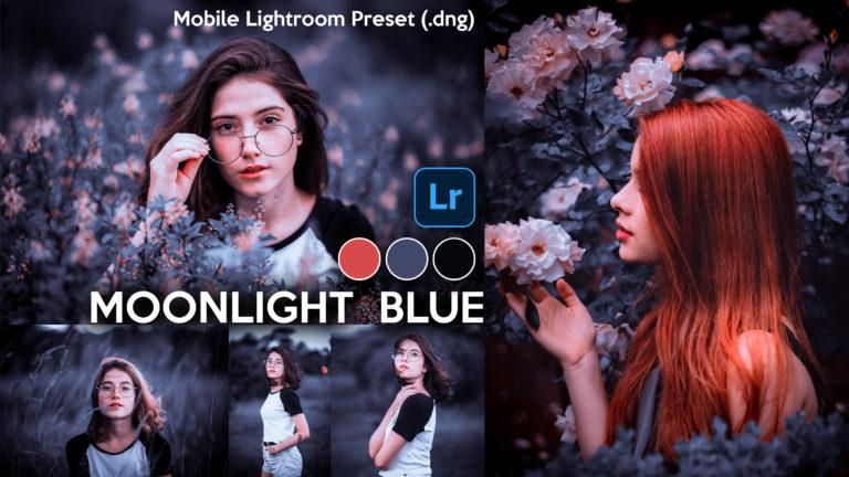 Download Moonlight Blue Lightroom Mobile Presets DNG of 2020 for Free | Moonlight Blue Mobile Lightroom Preset DNG of 2020 Download free | How to Edit Like Moonlight Blue Effect