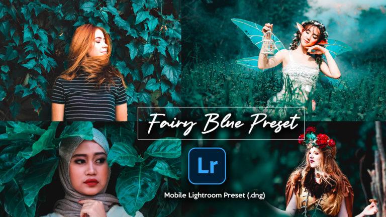 Download Fairy Blue Lightroom Mobile Presets DNG of 2020 for Free | Fairy Blue Mobile Lightroom Preset DNG of 2020 Download free | How to Edit Like Fairy Blue Effect