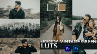 Download Free Moody Vintage Green LUTs   How to Colorgrade Photos & Videos Like Moody Vintage Green in Photoshop & Premiere Pro