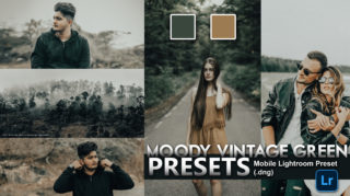 Download Moody Vintage Green Lightroom Mobile Presets DNG of 2020 for Free | Moody Vintage Green Mobile Lightroom Preset DNG of 2020 Download free | How to Edit Like Moody Vintage Green